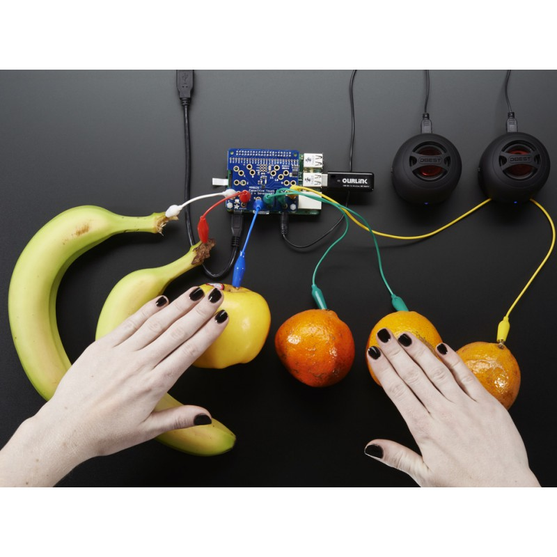 adafruit-capacitive-touch-hat-for-raspberry-pi-mini-kit-mpr121